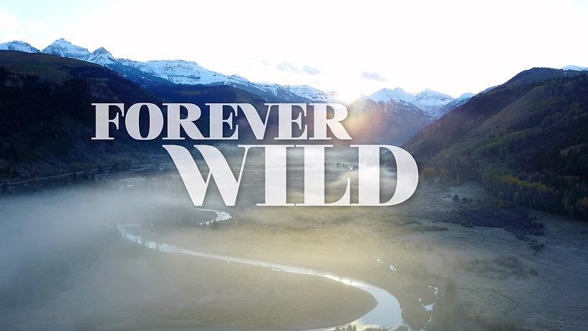 Forever Wild_trailer