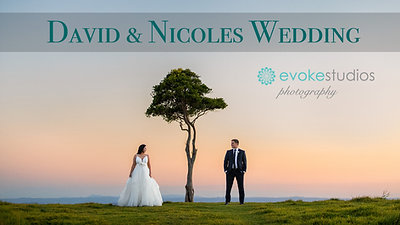 David & Nicole's Wedding Video