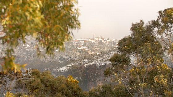 #010 - Snowy - Katoomba