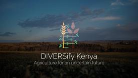 DIVERSify Kenya: improving agricultural resilience