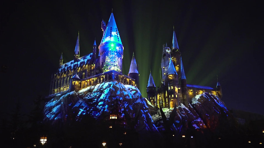 Wizarding World Holiday Show