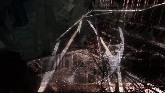 Dilate Ensemble: On Memory II (excerpts) Montalvo Arts Center (2020)