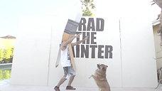Brad The Painter