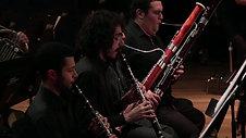 Richard Strauss - Concerto in D Major for Oboe (Washington Barella)