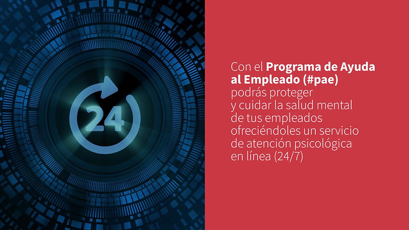 PROGRAMA DE AYUDA AL EMPLEADO