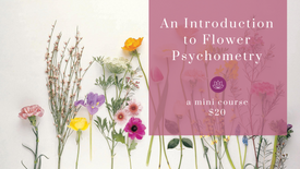 An Introduction to Flower Psychometry