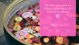 Introduction to Flower Essences & Flower Crafting