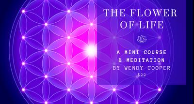 Flower of Life, Heart Light Meditation