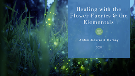 Healing with the Faeries and Elemental Spirits