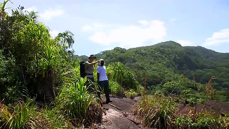 Restoration of Seychelles inselbergs _clip2