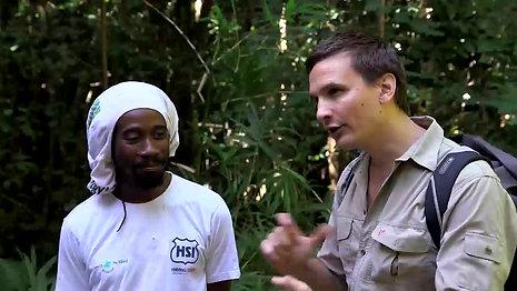 Restoration of Seychelles inselbergs _clip1