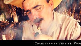 Cigar farm in Viñales, Cuba