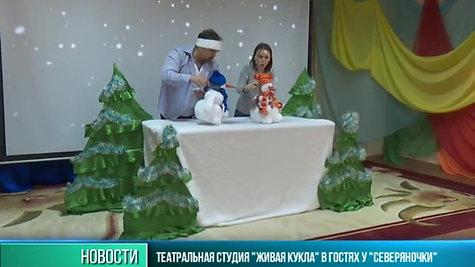 """Репортаж о спектакле """"Солнышко, приходи!"""" в  центре """"Северяночка"""""""