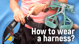 How to wear a harness?