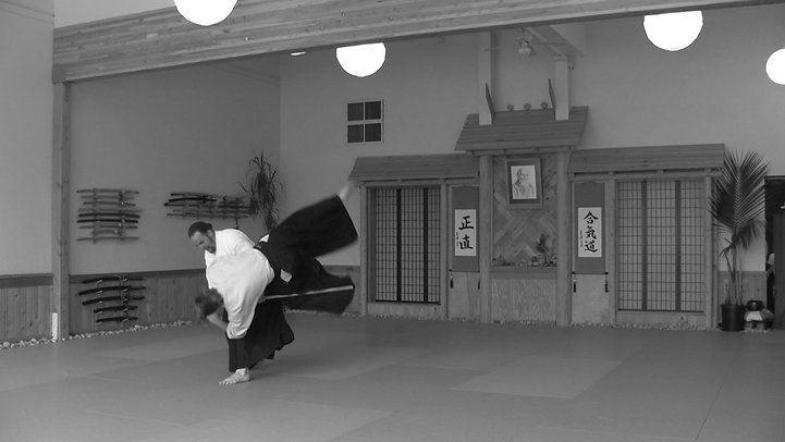 Old Heiwa Dojo Video Short