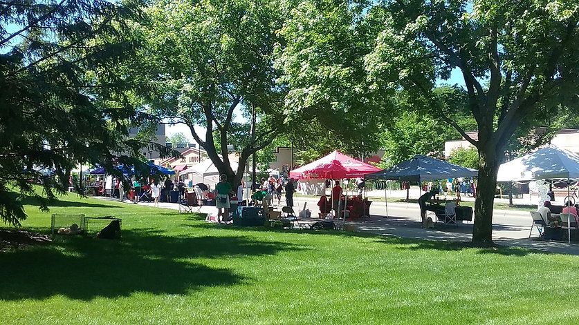 The Pet Zone at Open Streets Minneapolis