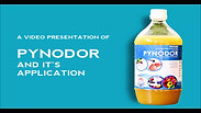 How to use Pynodor
