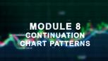 Module 8 Lesson 1
