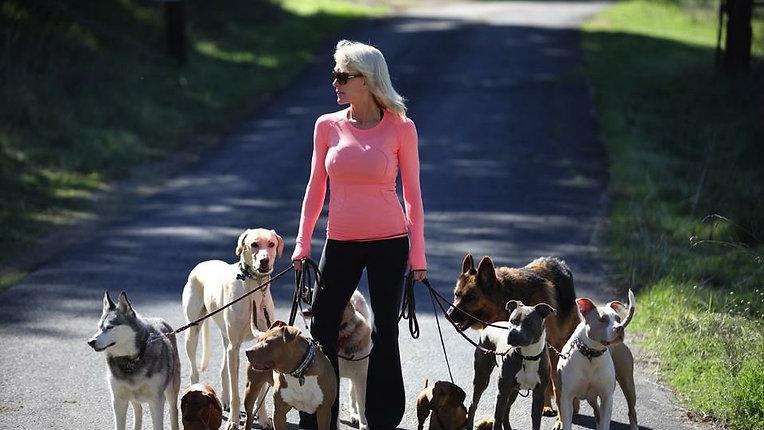 Cheri Lucas Dog Behaviorist