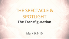 The Spectacle & Spotlight