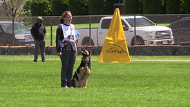 WDC 2021 Obedience