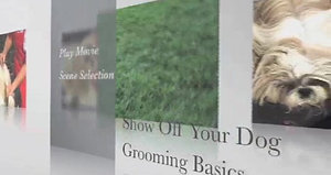 Grooming Basics DVD Preview