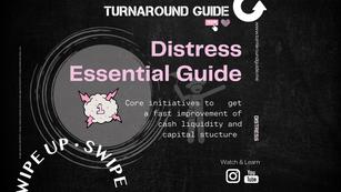 Distress Essential Guide I