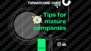 TIPS FOR MATURE COMPANIES