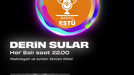 radyo v2