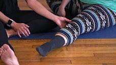 Knee Pain Series_Intro