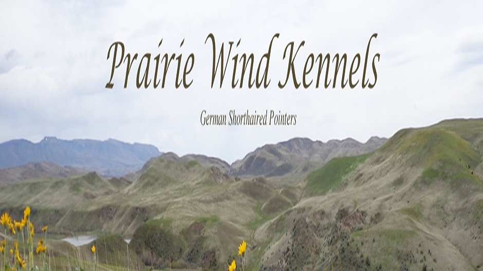 PRAIRIE WIND GSP's VIDEO CHANNEL