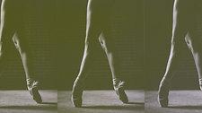 Dance. Train. Excel.