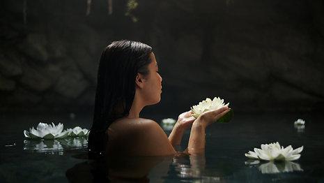 Therme Zen White Lotus