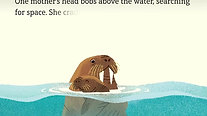 The Walrus Mother and her Calf