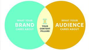 Plataformas y Audiencia On Line