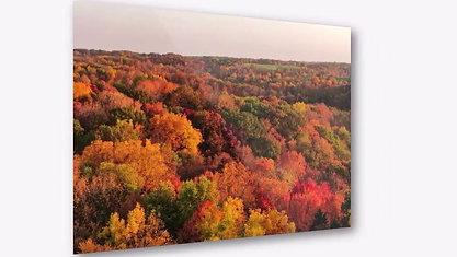 ColorFall Dubuque County
