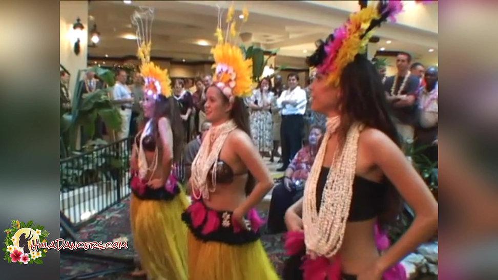 Hula Dancers for your Luau