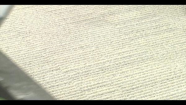 Behandeling tapijt