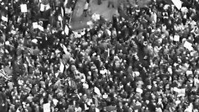 Protest VII
