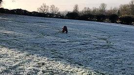 Frosty Walks