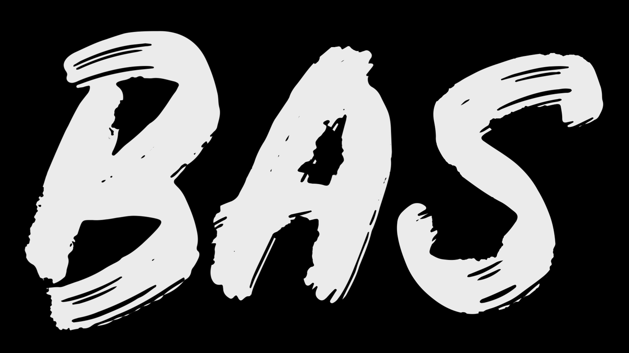 BasVision Videos mit Bas