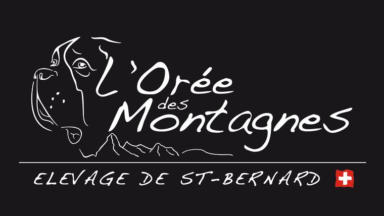 St-Bernard De l'Orée des Montagnes