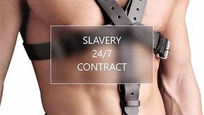 SlaveTeaser