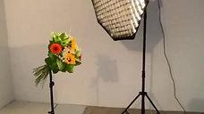 Backstages d'une séance photos fleurie en studio