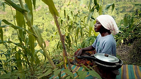 SAT (2020) - Sustainable Agriculture Tanzania