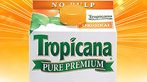 "Tropicana ""Morning"""