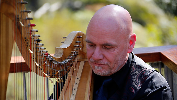 Martyn Cook Harp