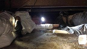 Crawlspace Inspection in Stuart