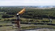 Energy Division Spotlight