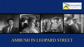 Ambush In Leopard Street (16+)